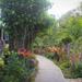 GardenView005